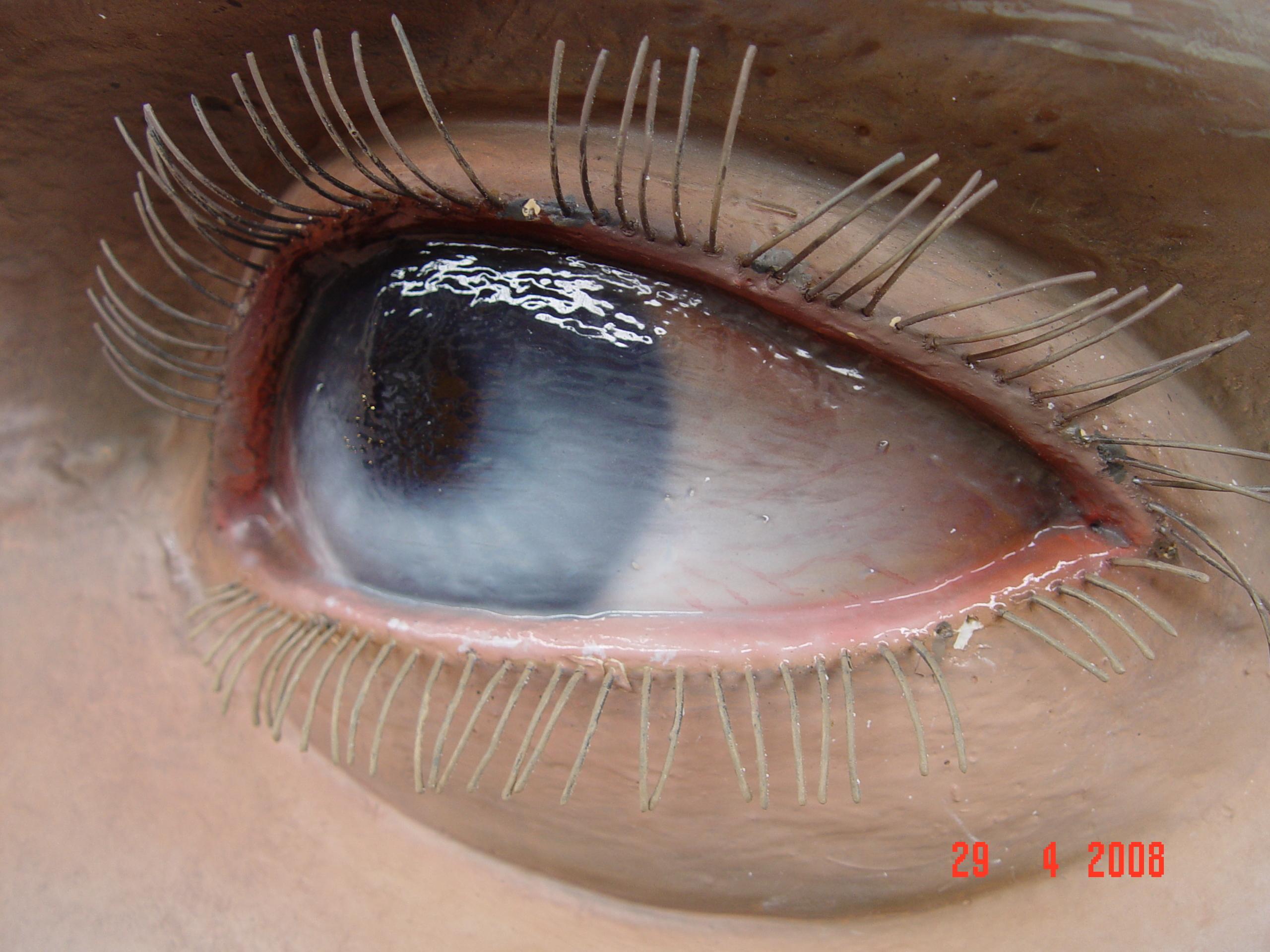 Work Hyper Realistic Eyes